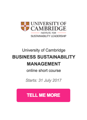CSR course business sustainability management