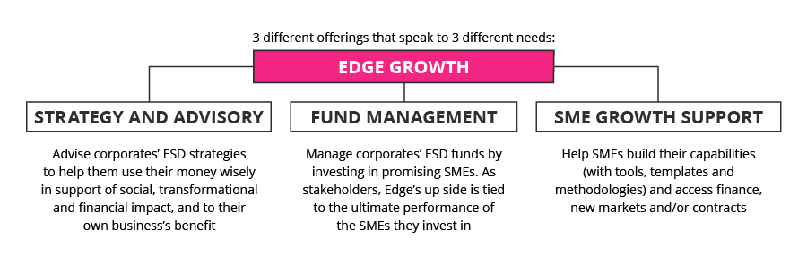 Edge Growth business offerings CSR