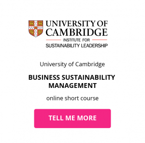 Buttons_business sustainability