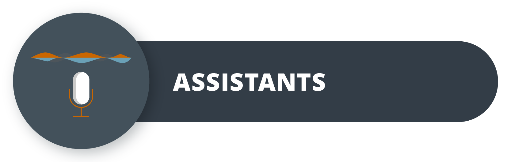 The roles of artificial intelligence in business: Assistants